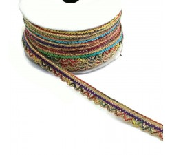 Braid Indian braid - Multicolor - 10 mm babachic